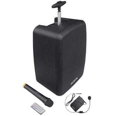 Przenośny bezprzewodowy system nagłośnieniowy z mikrofonem WA 410RC